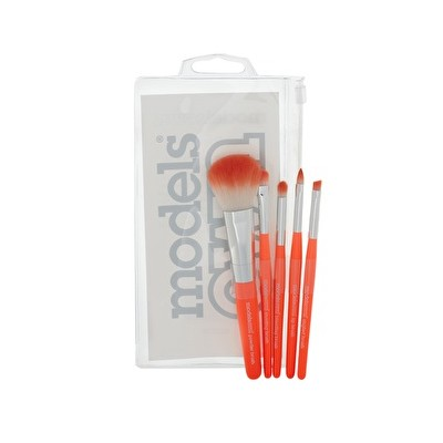 5pc Brush Set